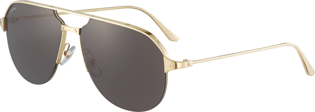 Santos de Cartier sunglassesSmooth and brushed golden-finish metal, gray lenses